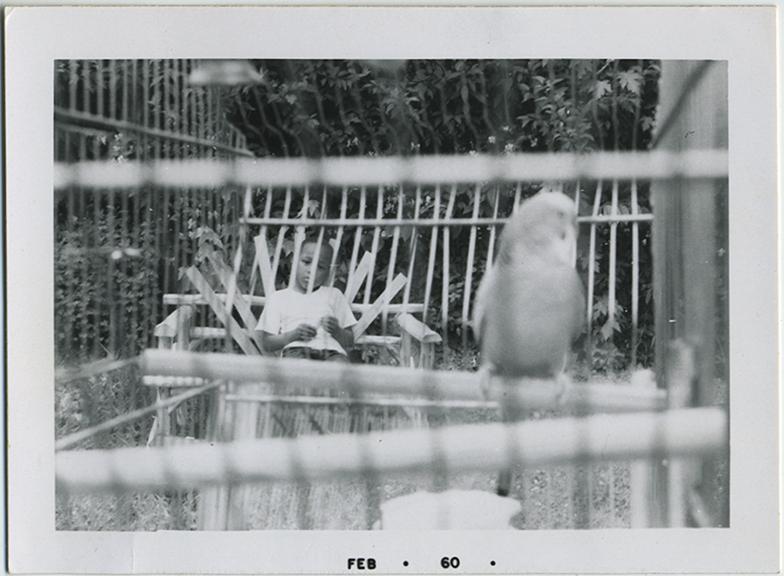 fp5216(Boy_AfricanAmerican_Bird_Cage)