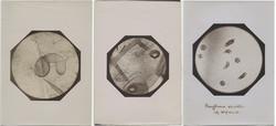 fp6110+combo(MicroscopeSlides)