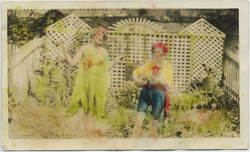 fp8371(Performers-Garden-Tinted)