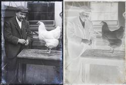 fp1772combo(NEG_man-chicken)