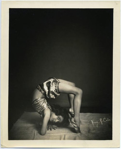 fp1839 (young-contortionist)