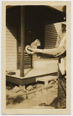 fp3119(HoldingSquirrel)