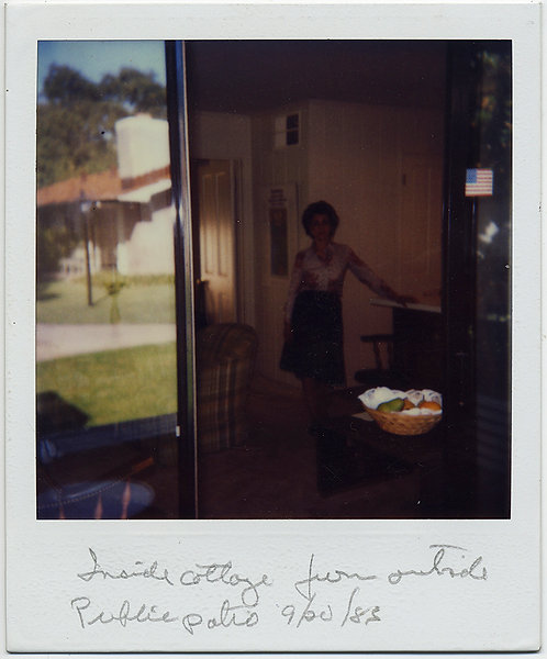 WOW! FABULOUS UNUSUAL POLAROID INSIDE OUTSIDE REFLECTION WOMAN in INTERIOR