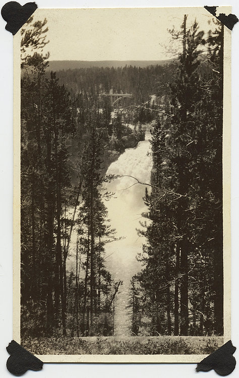 WOODED LANDSCAPE TREES ROARING RAPIDS CASCADES WATERFALL RIVER YELLOWSTONE?
