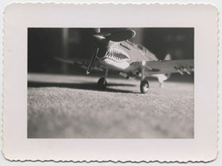 fp3162(Tabletop_Model_FighterPlane)