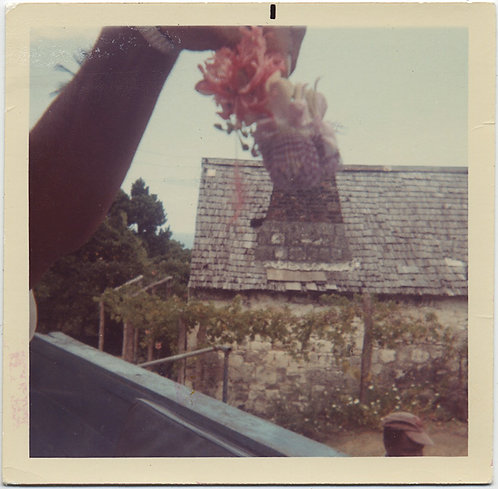 MYSTERY IMAGE DISEMBODIED HAND HOLDS up POSY MELDS with SLATE STONE ROOF UNUSUAL