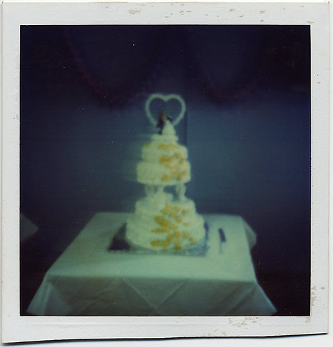 LOVELY MOODY PAINTERLY POLAROID of WEDDING CAKE EXQUISITE TONALITY COLOR