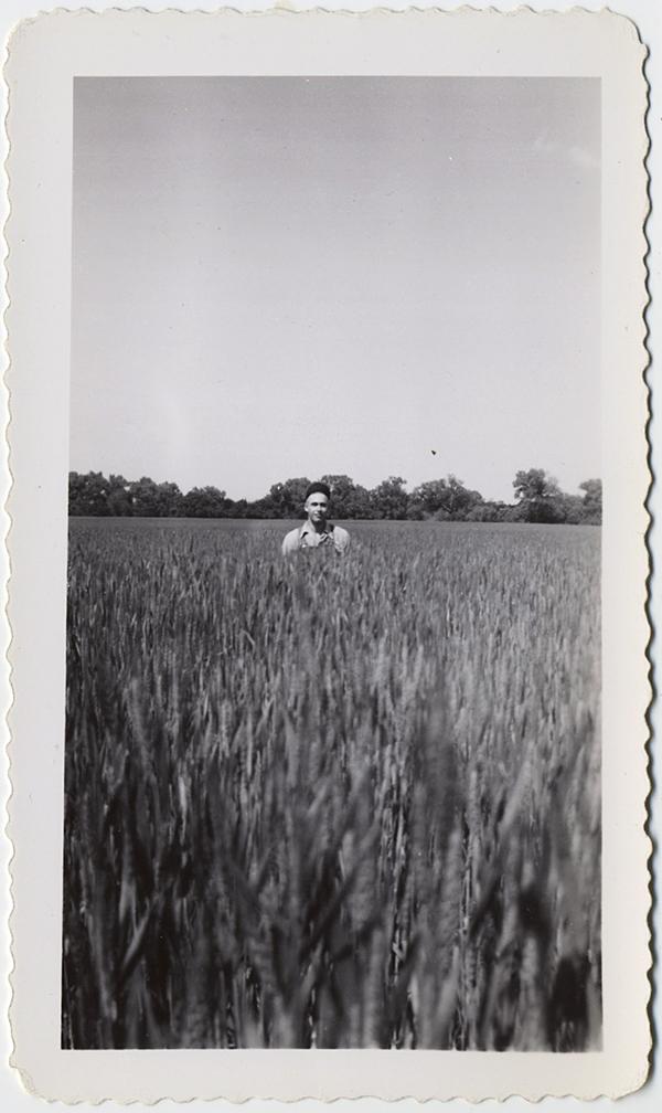fp10303(Man-Cornfield)