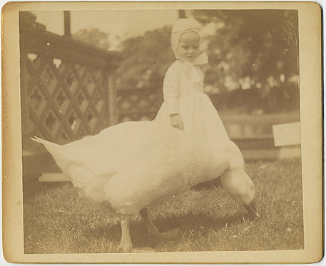 "EARLY KODAK! TODDLER in BONNET with GOOSE! ""Carl & the Swan"" Providence 1891"