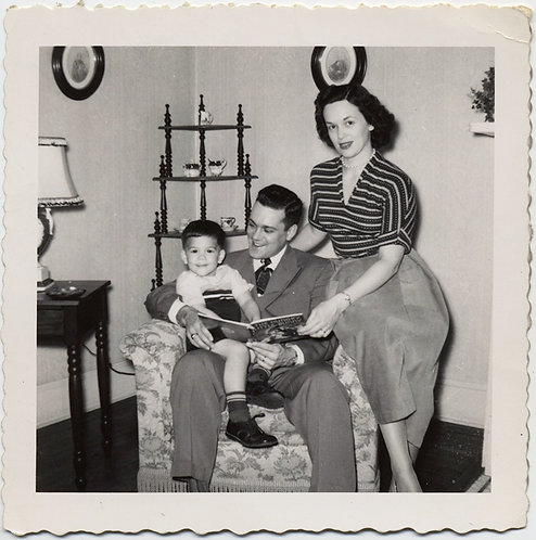GENERIC ICONIC HAPPY AMERICAN NUCLEAR FAMILY STORYTIME DAD'S LAP AMBITIOUS MOM