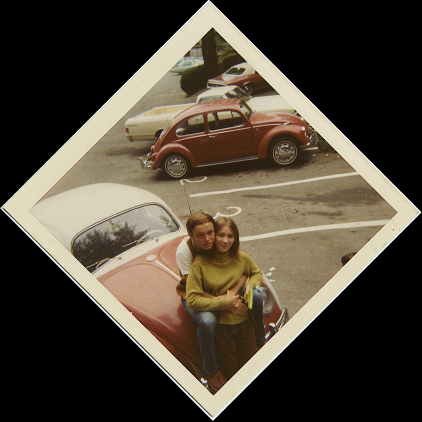fp8761(VWbug-Love-Bugs)