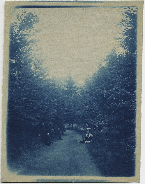 GORGEOUS CYANOTYPE VICTORIANS on TREE-LINED PATH PAUSE WALK to POSE at REST