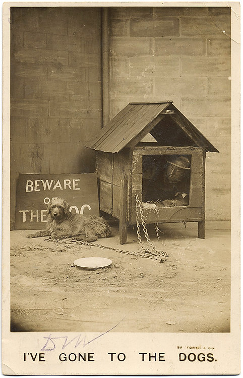 "HUMOR FUNNY POSTCARD RPPC ""I've Gone to the Dogs"" MAN in DOGHOUSE"