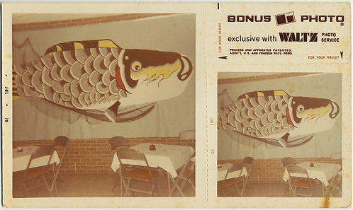 BONUS PHOTO HUGE FISH MURAL on WALL of RESTAURANT SUSHI SHOP?