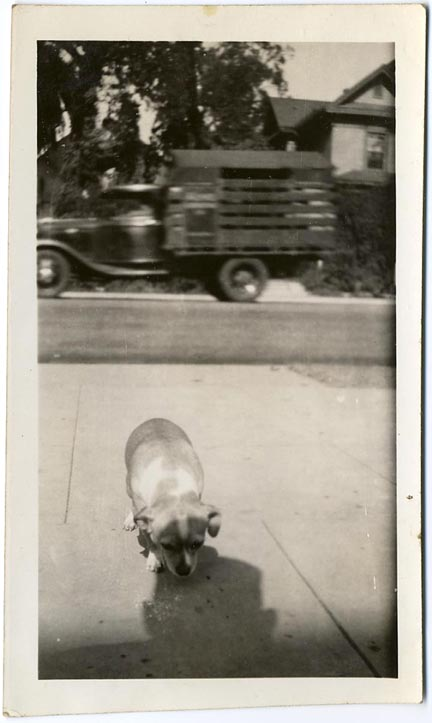 fp1237 (Morose Dog Truck and Shadow)
