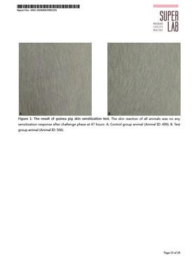 松勝 天竺鼠皮膚敏感性試驗 (極大化法) (生理食鹽水)