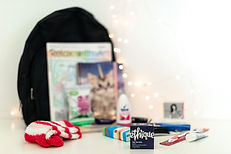 Bag with items in front including Ethique shampoo bar, socks, journal, deoderant, toothbrush, tissues, treats.