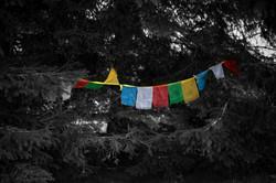 Locarno flags