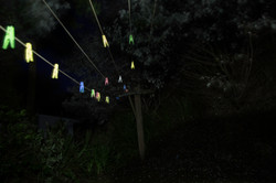Clothes line and pegs