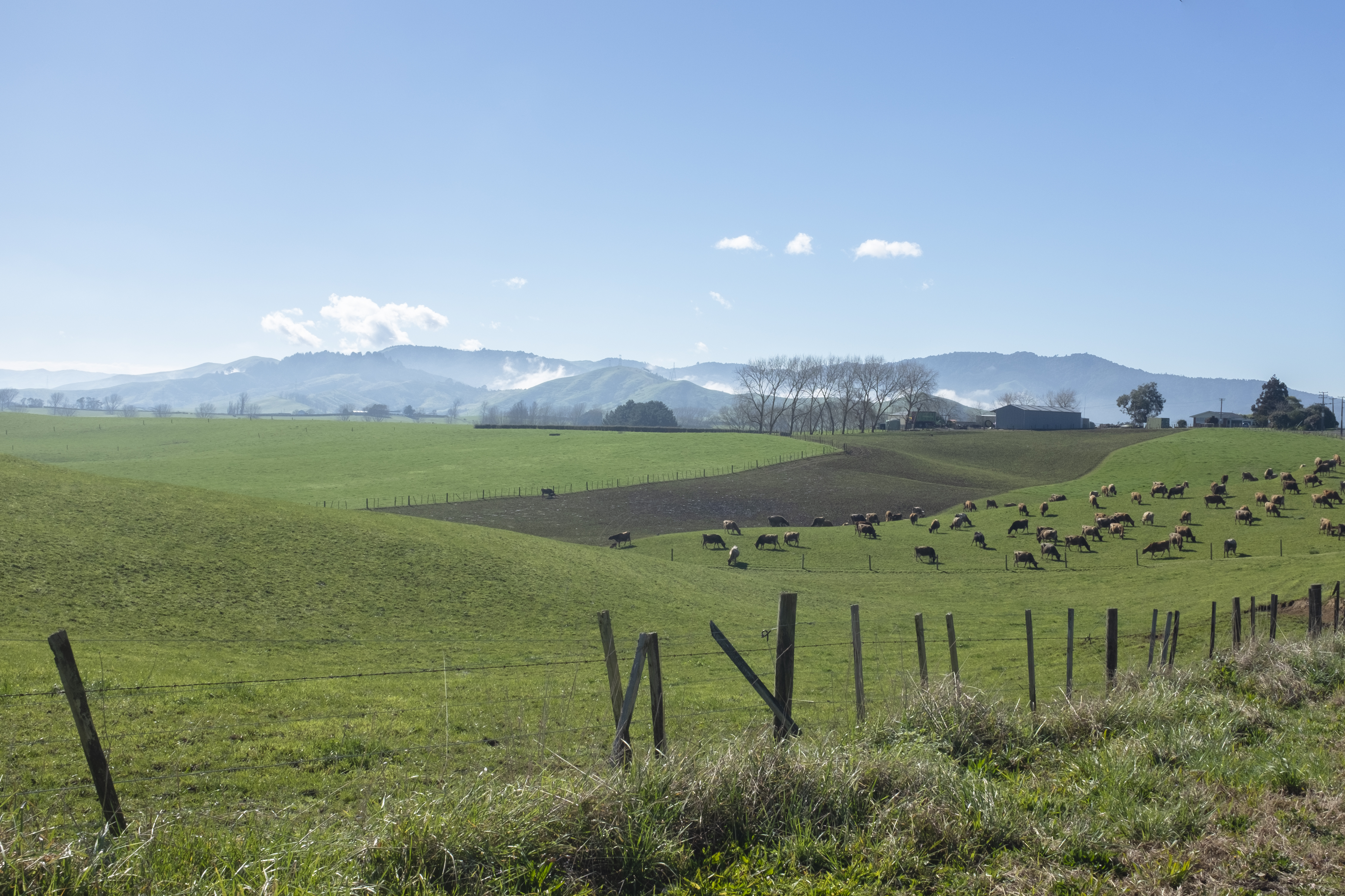 Countryside NZ
