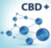 What is CBD Article Template.png