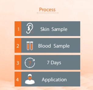 skinprocess.PNG