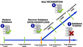 Restore and Recovery Database in Oracle Container