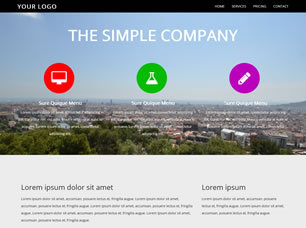 Simple Company Website