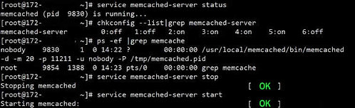 Install auto Memcached