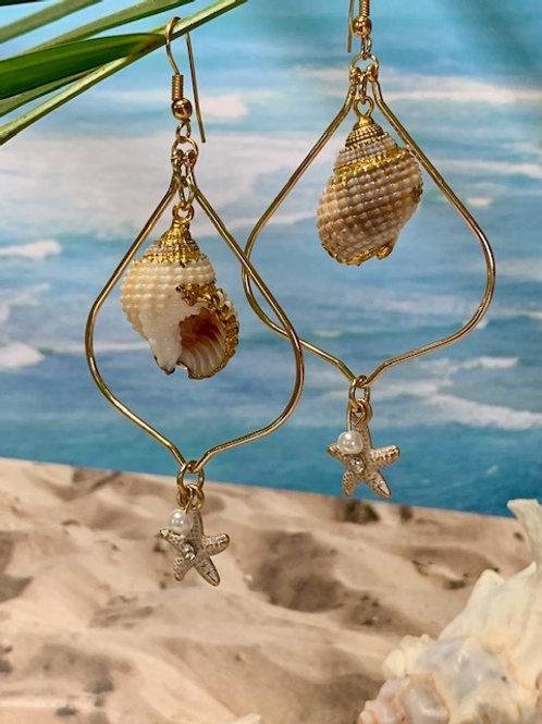 Golden Trimmed Conch Shell Dangle Earrings