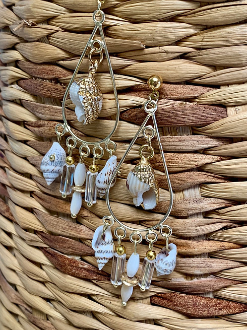 Golden Trimmed Conch and Shell Charms Earrings