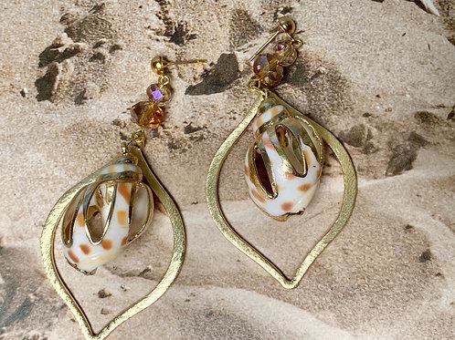 Caribbean shell golden trimed, e-coated teardrop