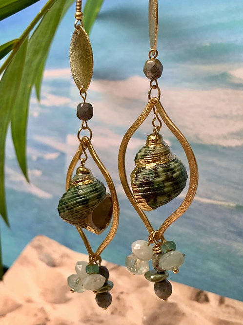 Golden Trimmed Green Turban Shell teardrop earrings