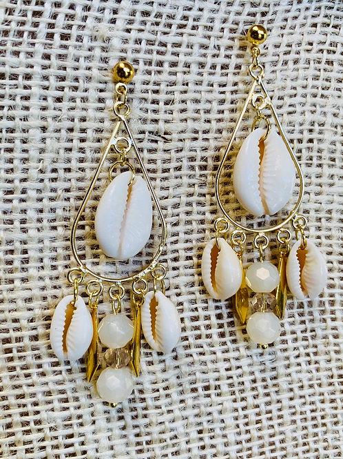 Cowride shells Golden Teardrop Earrings