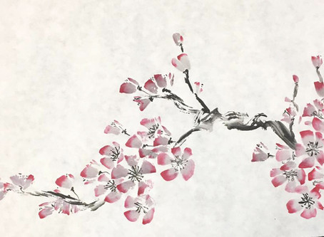 Cerezo, Sakura