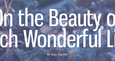 On the Beauty of Each Wonderful Life