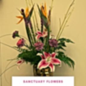 sanctuary flowers (2).png