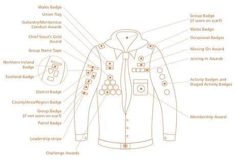 Scouts_Uniform Diagrams (2017)_edited.jp