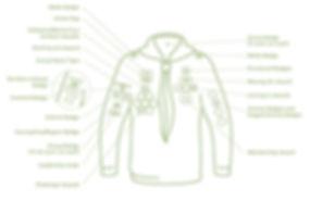 Cubs_Uniform Diagrams (2017).jpg