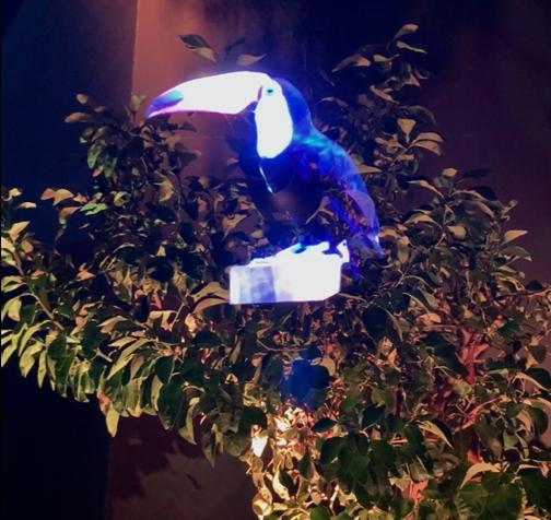 HOLOGRAM X TREE