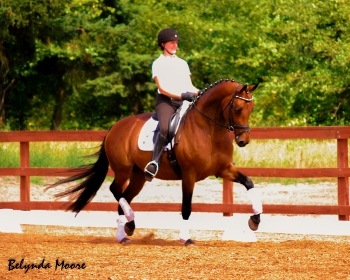 Miss Molly Jones - 2003 AA mare