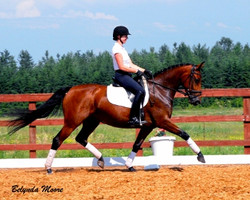 Dauphine de Jazz - 2008 Dutch Mare