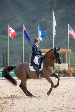 Viggo winning the FEI I-1