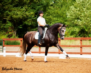 Roezlyn - 2006 2nd level mare