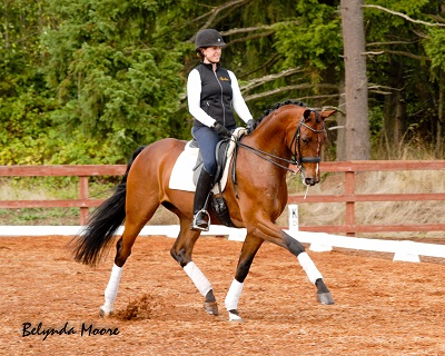 Stepp of Magic-2006 4th/PSG Gelding