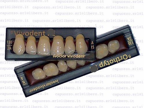Denti SR vivodent x6 resina 1pz anteriori