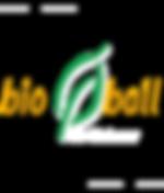 Bio Ball Vernetzung.png