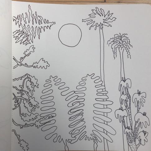 'Toujours des Plantes Australiennes' Sydney, janvier 2018.