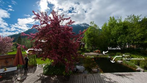 Garten, Teich und Terasse