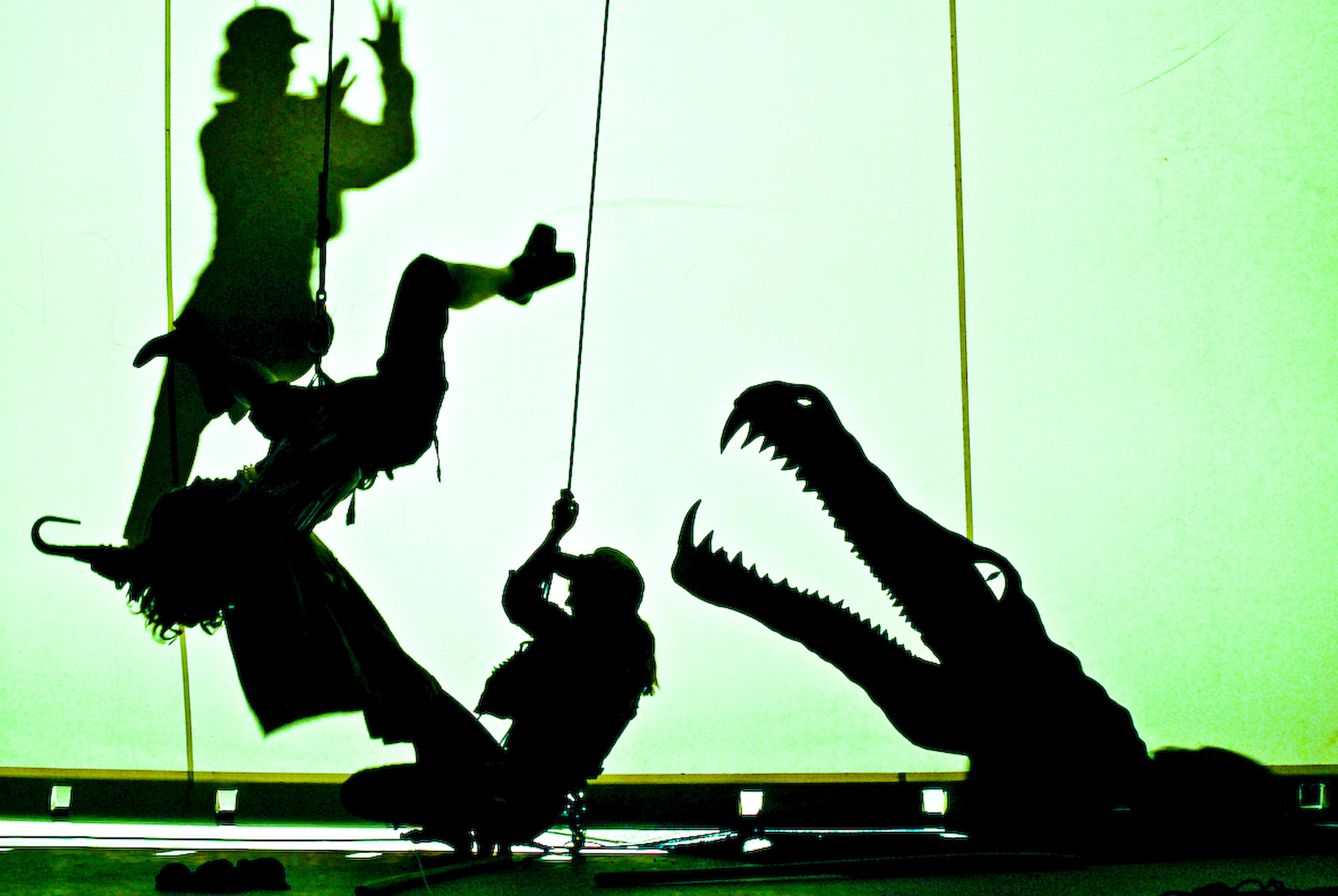Peter Pan | Wenn Träume fliegen | 2009-2011